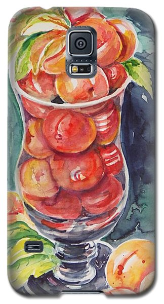 Watercolor Series No. 214 Galaxy S5 Case