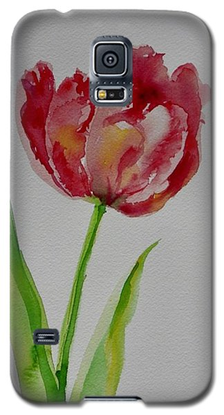 Watercolor Series No.  228 Galaxy S5 Case