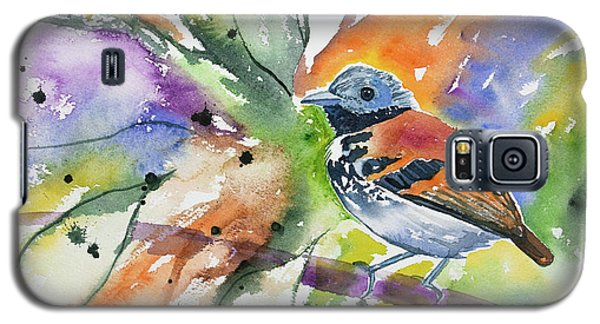 Watercolor - Spotted Antbird Galaxy S5 Case