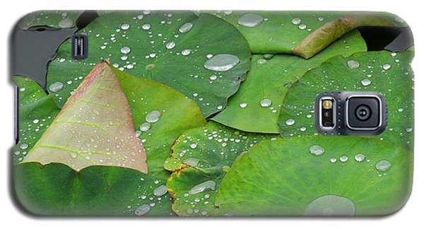 Lily Galaxy S5 Case - Waterdrops On Lotus Leaves by Silke Magino
