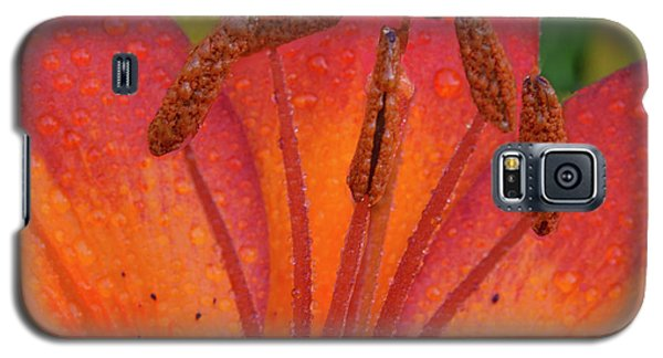 Galaxy S5 Case featuring the photograph Watered Lily by Jean Noren