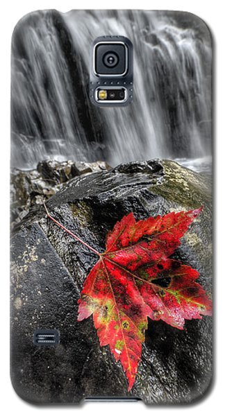 Waterfall In Fall Galaxy S5 Case
