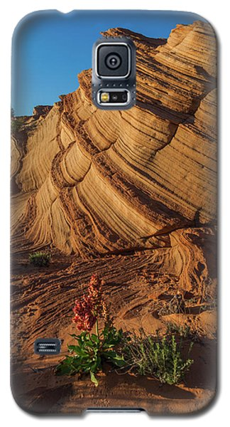 Waterhole Canyon Evening Solitude Galaxy S5 Case
