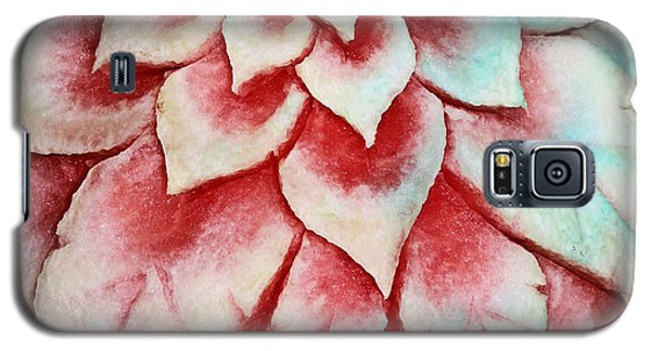 Galaxy S5 Case featuring the photograph Watermelon Carving by Kristin Elmquist