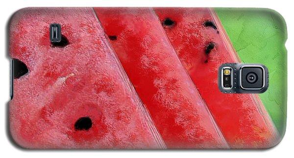 Watermelon Slices Galaxy S5 Case