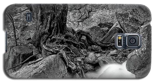 Galaxy S5 Case featuring the photograph Waterside by Tatsuya Atarashi
