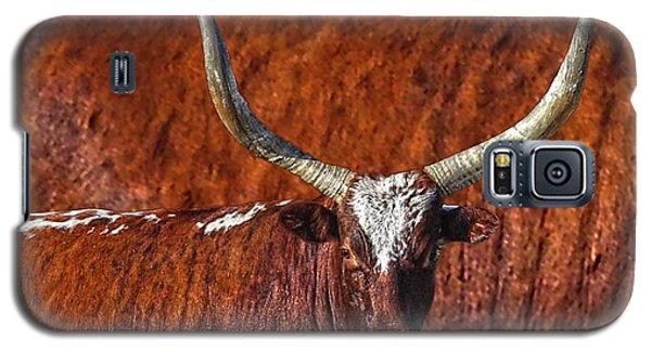 Galaxy S5 Case featuring the photograph Watusi Blues In Rustic Red by Amanda Smith
