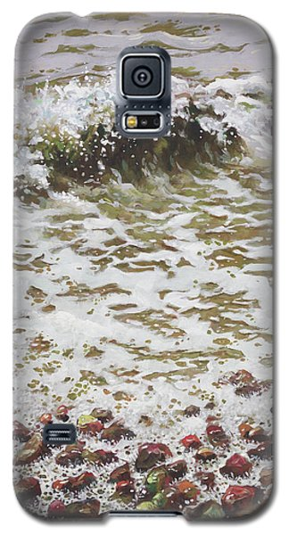 Galaxy S5 Case featuring the painting Wave And Colorful Pebbles by Martin Davey