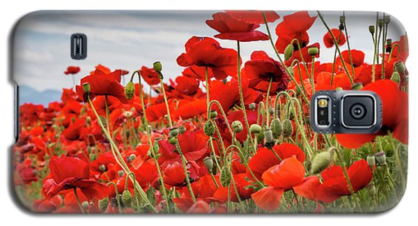 Waving Red Poppies Galaxy S5 Case