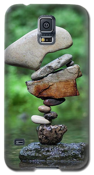 Way Of Zen Galaxy S5 Case