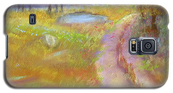 Way To The Pond Galaxy S5 Case