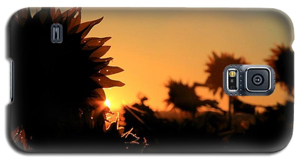 Galaxy S5 Case featuring the photograph We Are Sunflowers by Chris Berry