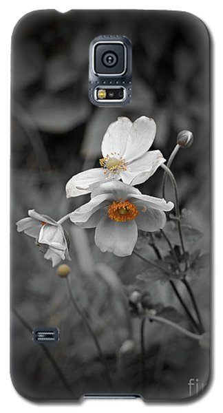 We Fade To Grey 4 Galaxy S5 Case