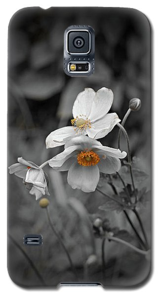 We Fade To Grey 4 Galaxy S5 Case