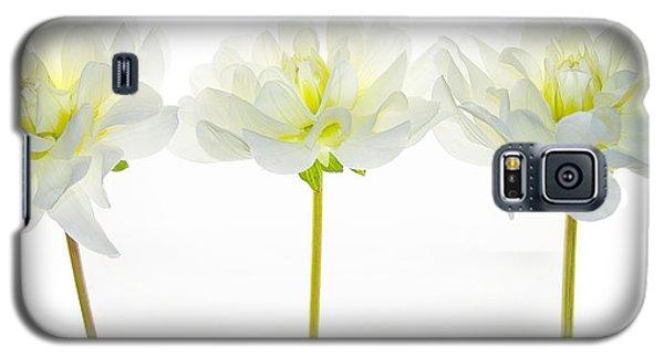 We Glow Galaxy S5 Case by Rebecca Cozart