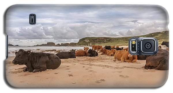 Galaxy S5 Case featuring the photograph We Moo Like To Be Beside The Seaside by Roy McPeak