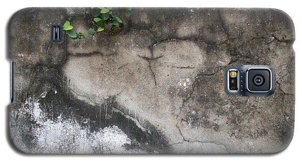 Weathered Broken Concrete Wall With Vines Galaxy S5 Case by Jason Rosette