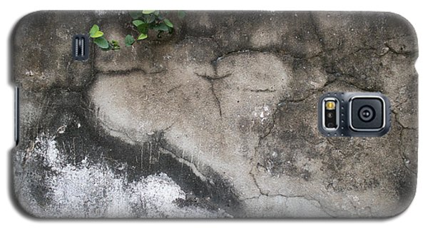 Weathered Broken Concrete Wall With Vines Galaxy S5 Case