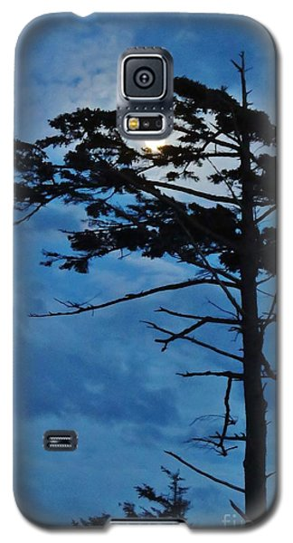 Weathered Moon Tree Galaxy S5 Case