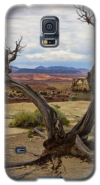 Weathered Galaxy S5 Case by Steven Parker