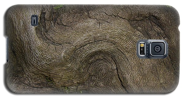 Galaxy S5 Case featuring the photograph Weathered Tree Root by Mike Eingle