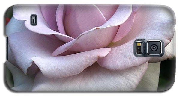 Wedding Cake Galaxy S5 Case by Carol Sweetwood
