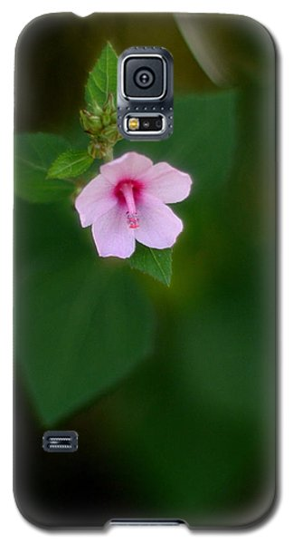 Weed Flower 907 Galaxy S5 Case
