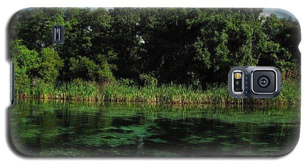 Weeki Wachee River Galaxy S5 Case by Barbara Bowen