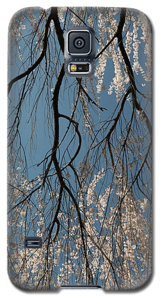 Weeping Cherry #2 Galaxy S5 Case