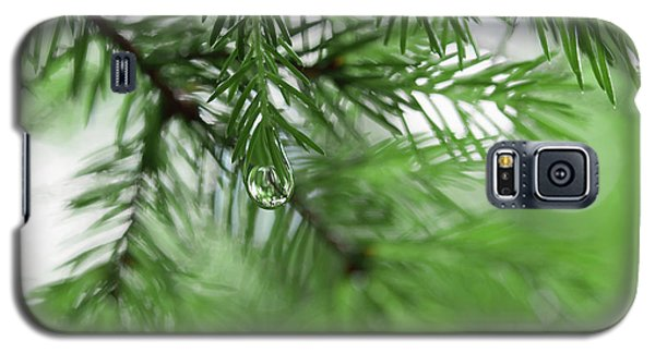 Weeping Pine 2 Galaxy S5 Case