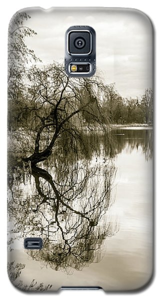 Weeping Willow Tree In The Winter Galaxy S5 Case