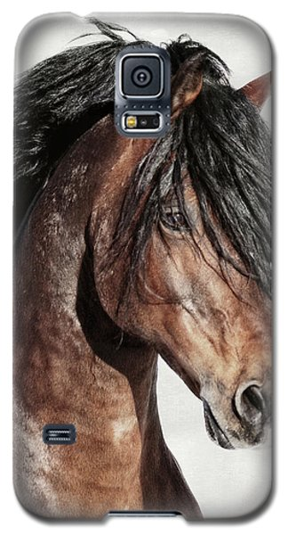 Welsh Cob Portrait Galaxy S5 Case
