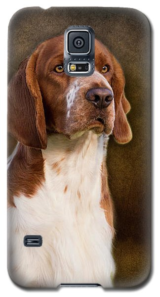 Welsh Springer Spaniel Galaxy S5 Case