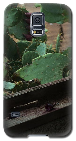 West Texas View Galaxy S5 Case by Travis Burgess
