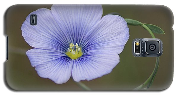 Galaxy S5 Case featuring the photograph Western Blue Flax by Ben Upham III