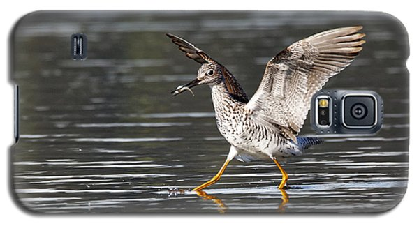 Greater Yellowlegs Galaxy S5 Case