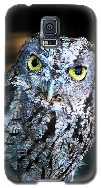 Galaxy S5 Case featuring the photograph Western Screech Owl by Anthony Jones