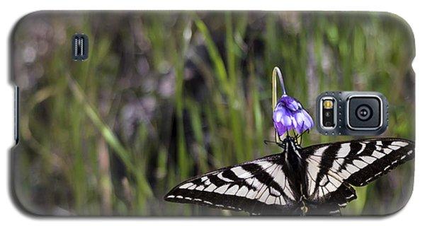 Western Tiger Swallowtail Galaxy S5 Case