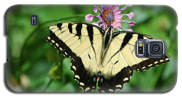 Western Tiger Swallowtail Galaxy S5 Case
