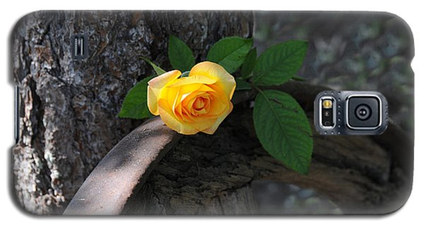 Western Yellow Rose II Galaxy S5 Case