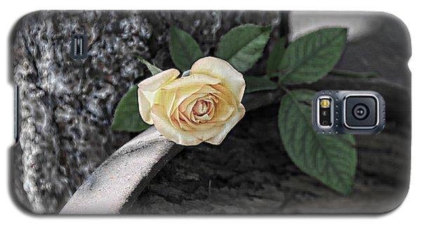 Western Yellow Rose Iv Galaxy S5 Case