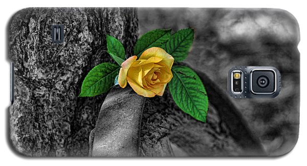 Western Yellow Rose Two Tone Galaxy S5 Case