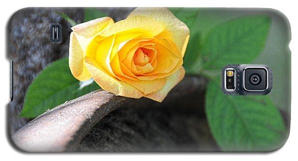 Western Yellow Rose Vi Galaxy S5 Case