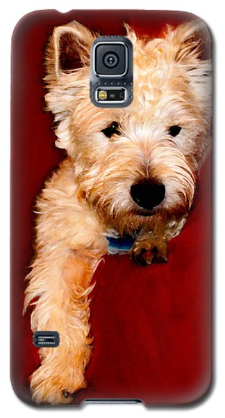 Westie Boy Galaxy S5 Case