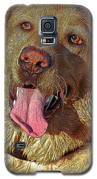 Wet Dog Galaxy S5 Case by Diane E Berry