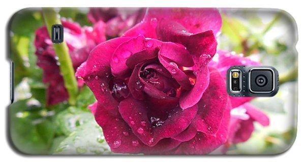 Wet Rose Galaxy S5 Case
