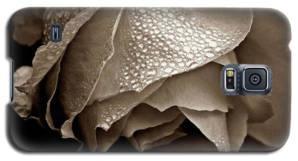 Wet Rose In Sepia Galaxy S5 Case
