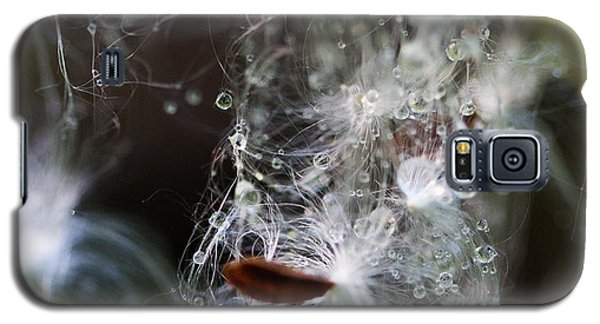 Wet Seed Galaxy S5 Case