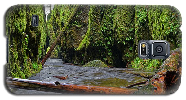 Galaxy S5 Case featuring the photograph Wet Trail by Jonathan Davison