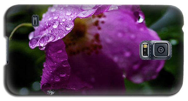 Galaxy S5 Case featuring the photograph Wet Wild Rose by Darcy Michaelchuk